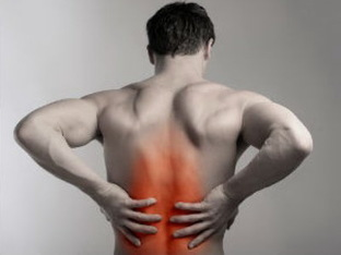 the pain in my back